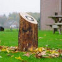 Van Hees Infra Techniek Uplight Led houten verlichting